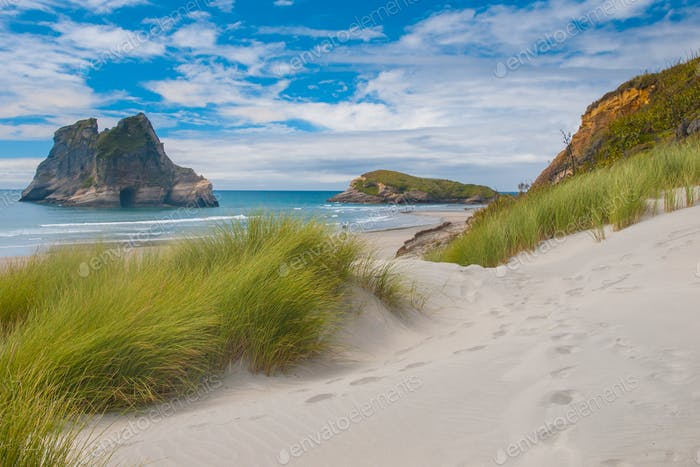 Dune vegetation at Famous Wharariki Beach, South Island, New Zea