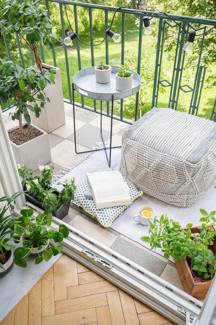 Top view of balcony with lights, fresh plants, mug with tea, ope