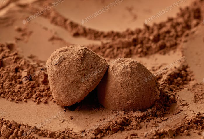 chocolate truffles on cocoa powder background