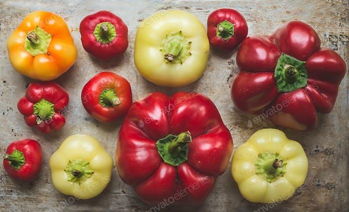 Süßer Paprika unterschiedlicher Größe und Farbe auf einer rustikalen Metallrückseite