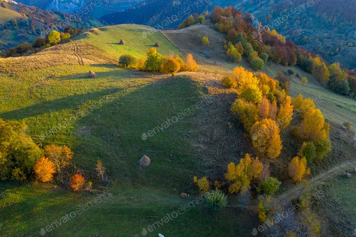 Aerial view of beautiful autumn hills and colorful forest from a drone. Transylvania, Romania