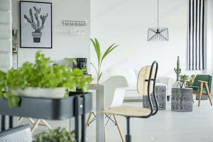 Home interior in white