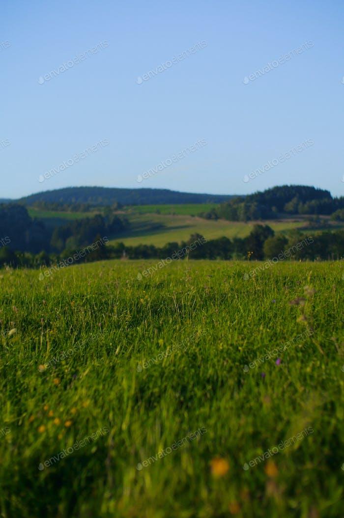 peacheful highlands landscape of czech republic, europe