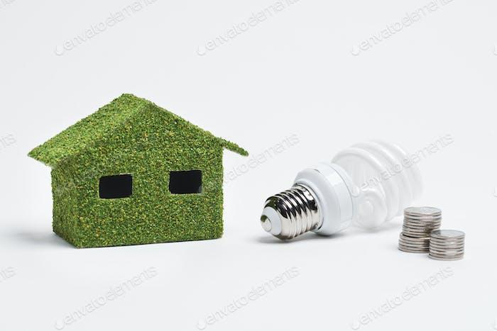 Projekt des ökologischen und energieeffizienten Hauses