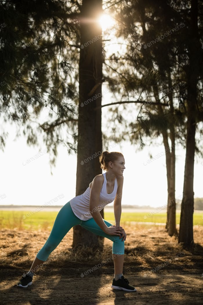 Woman exercising by tree at farm on sunny day