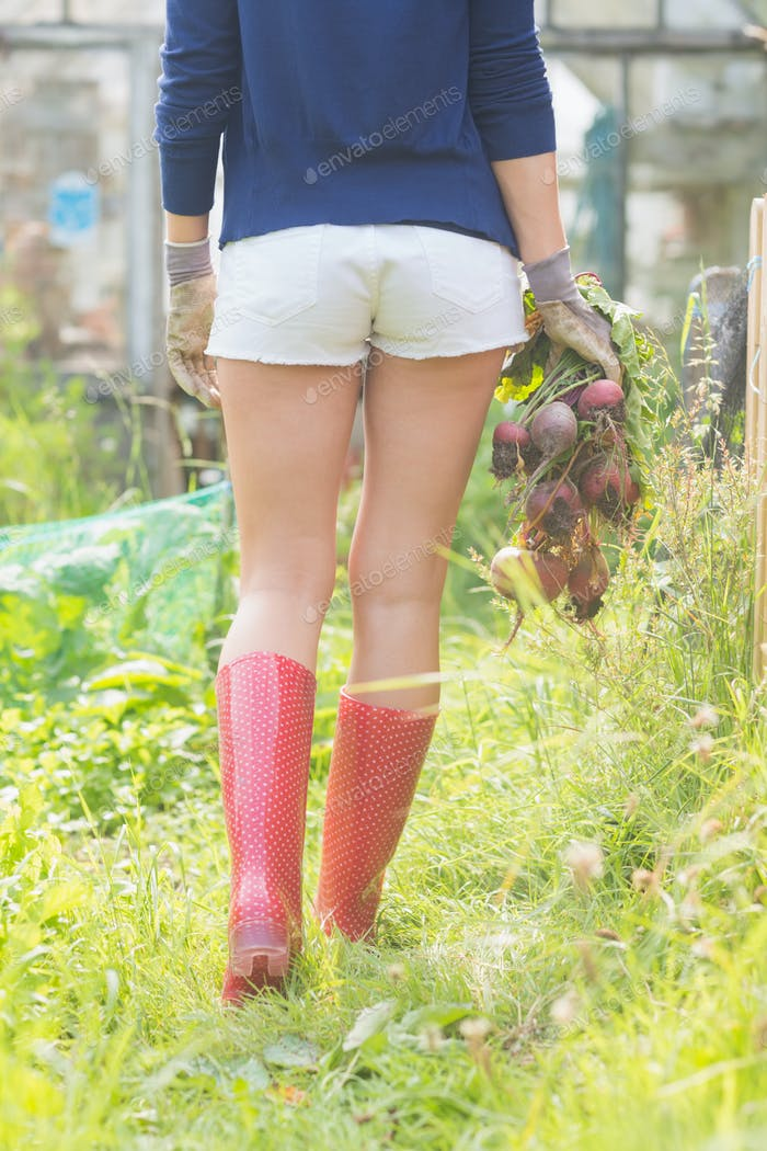 Woman holding home grown vegetables at home in the garden
