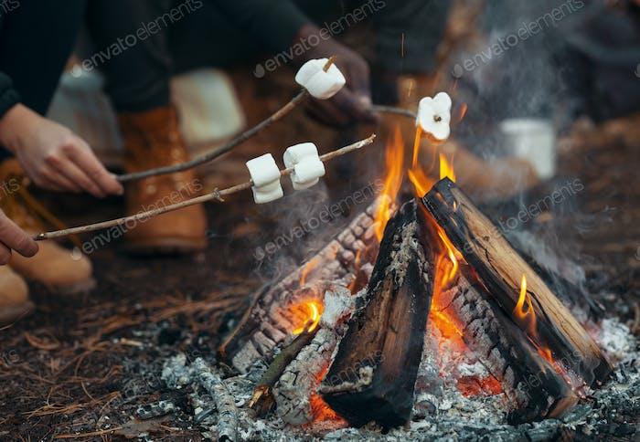 Nahaufnahme von Menschen, die Marshmallow im Wald braten