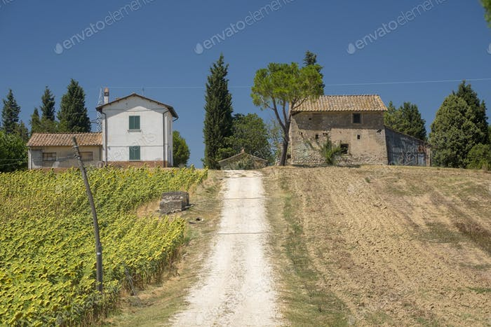 Typical farm in Umbria (Italy) at summer