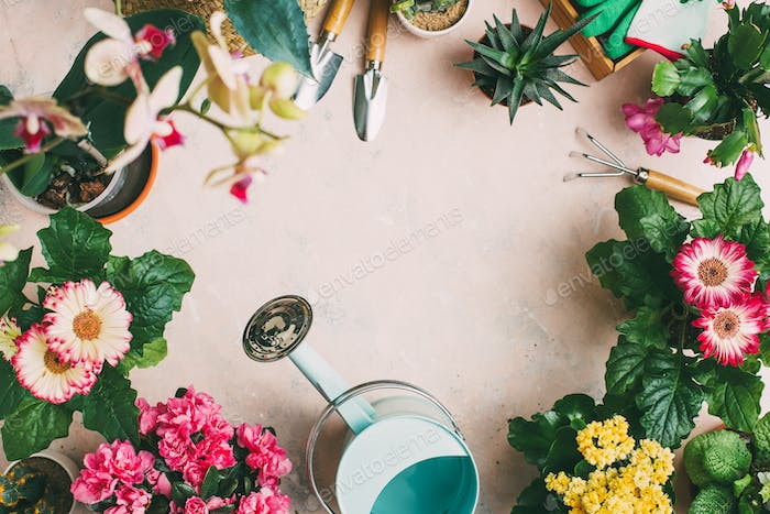 Gardening tools and different flowers