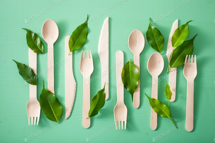 eco friendly wooden cutlery. plastic free concept