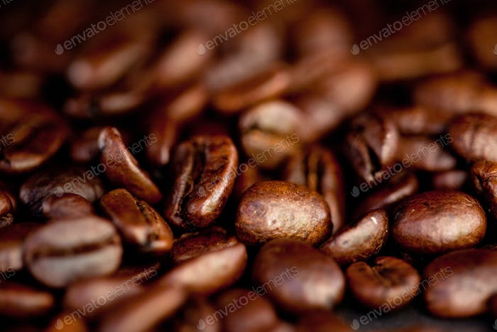 Close up of blurred coffee seeds laid out together