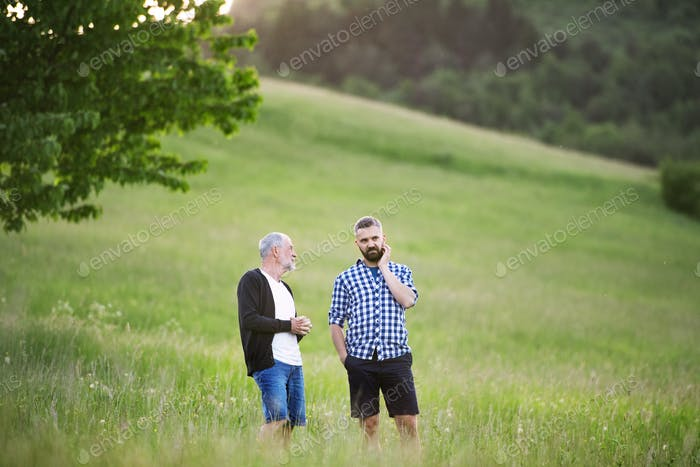 An adult hipster son with senior father walking in nature at sunset.