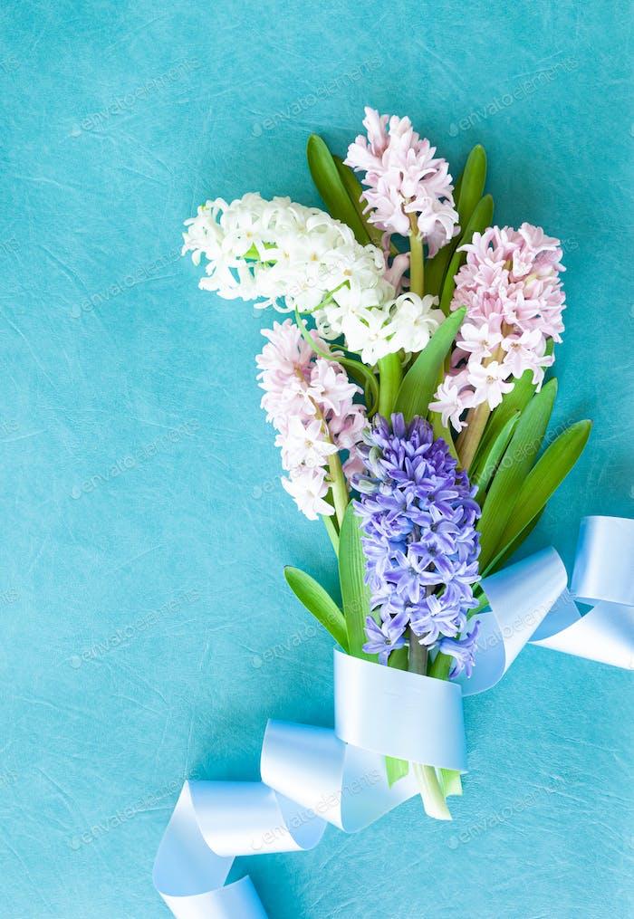 Frische Hyazinthe Blumen