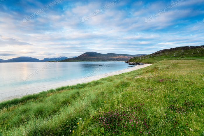 Coastal grassland at Horgabost