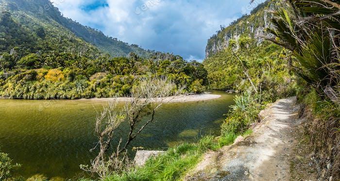 Porarari river track near Punakaiki, West Coast, South Island, N