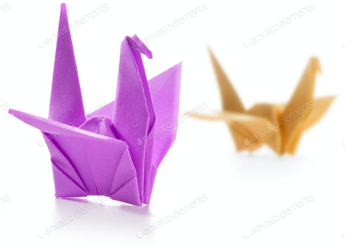 pair of colorful origami swans isolated on white