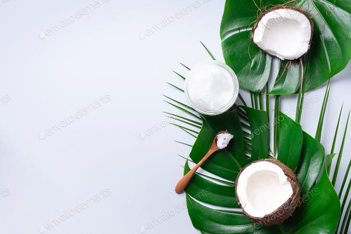 Green tropical monstera leaves, ripe coconuts, coconut oil on grey background with copy space. Top