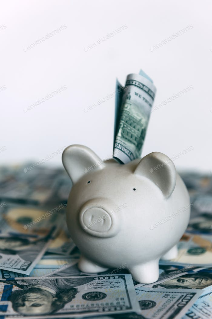 Piggy moneybox with dollar cash