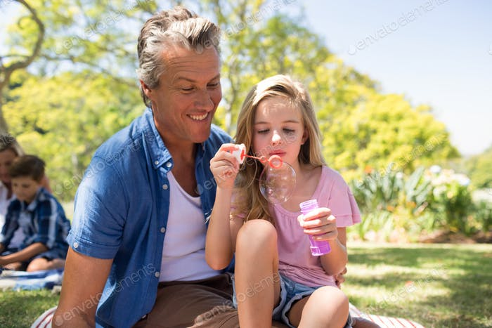 Father and daughter blowing bubble with bubble wand at picnic in park
