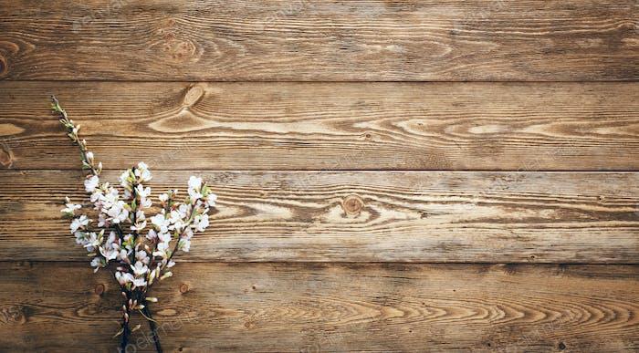Blumen auf Holz Textur Hintergrund