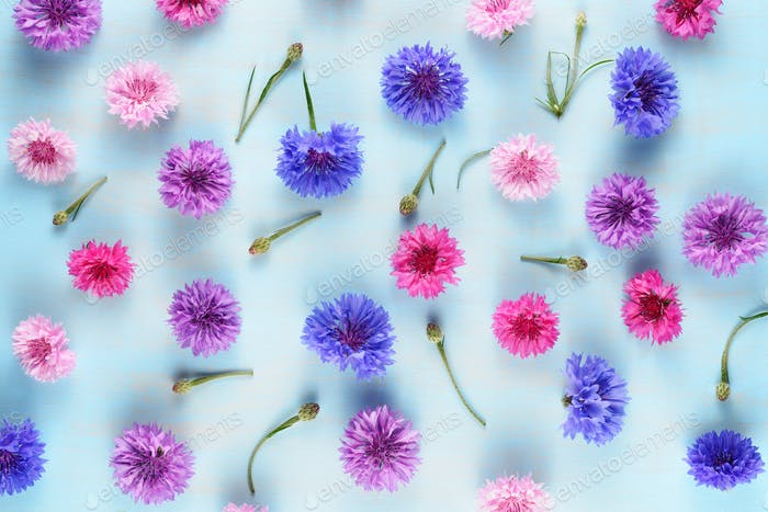 Floral background with cornflowers on blue