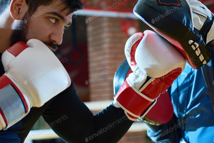 Determined boxer punching training pads