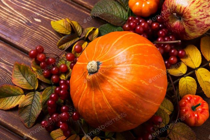 Fall decor with pumpkins, apples, viburnum