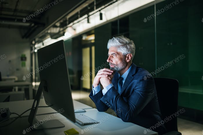 Portrait of mature businessman with computer in an office, working.