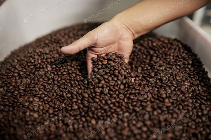 Person mixing roasted coffee beans