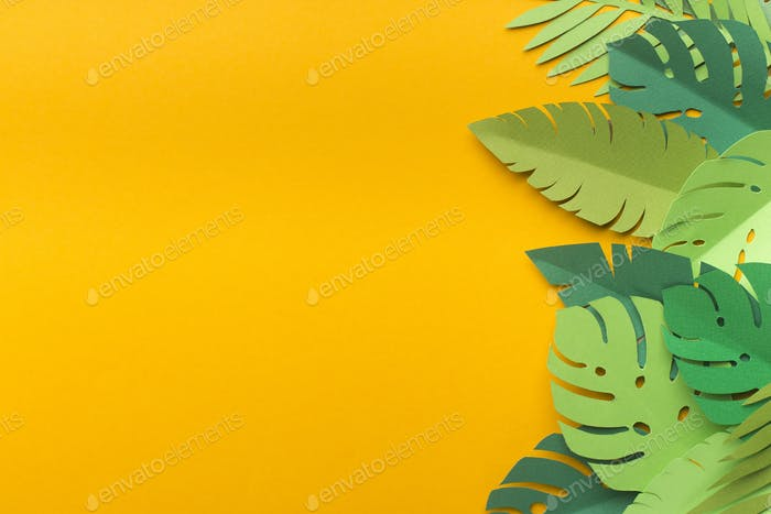 Various green tropical leaves on yellow background