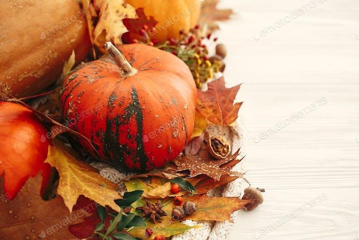 Pumpkins with fall leaves, berries, cinnamon, anise, acorns, nuts