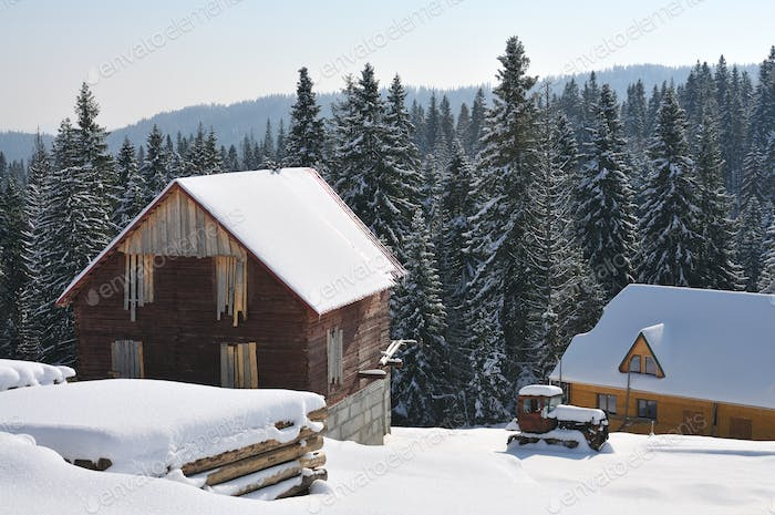 Wooden houses on a background of snowy forest