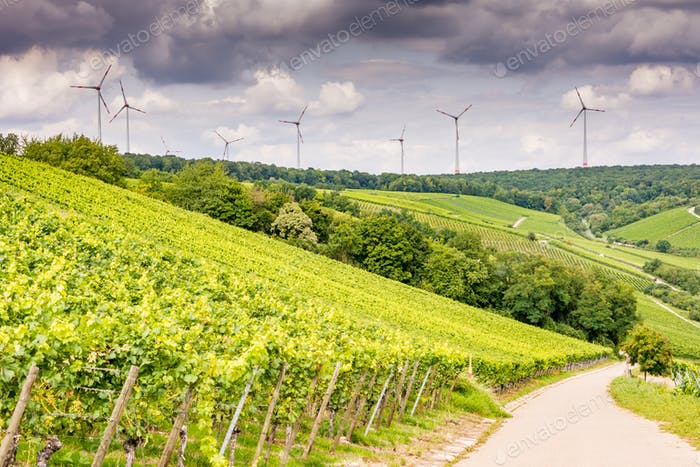 Growing wine and windpower in Franconia