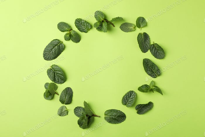 Circle of mint on green background, space for text