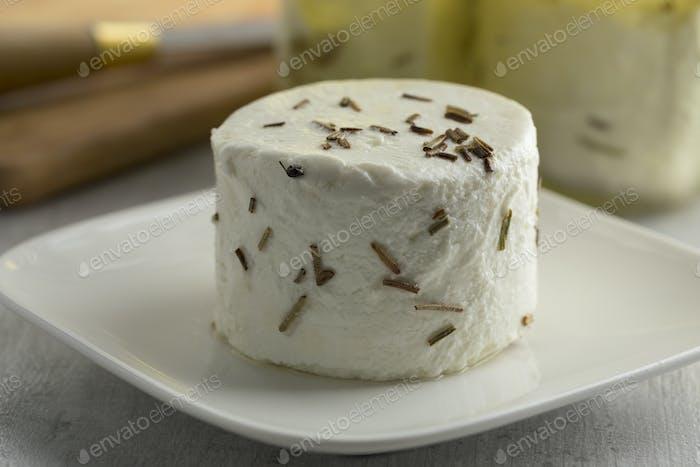 Single preserved white organic Dutch goat cheese
