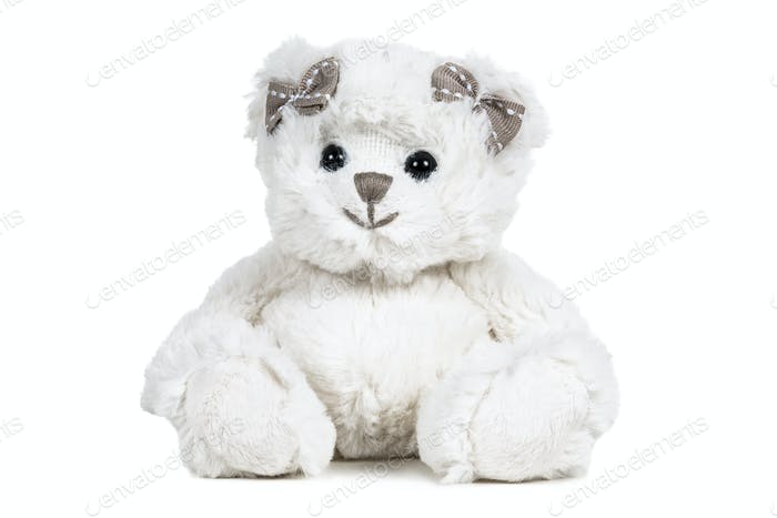 White fluffy teddy bear
