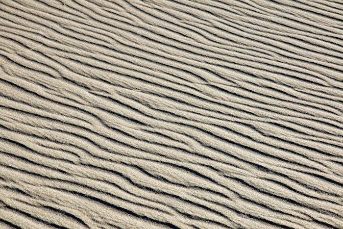 A rippled sand dune