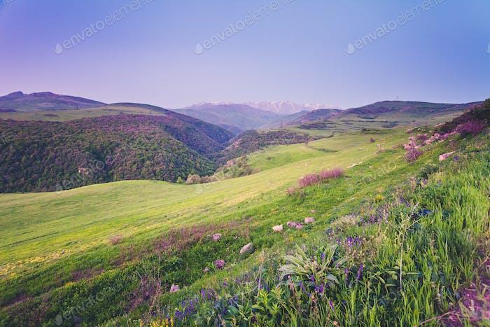 Hermoso Horizontal de montaña