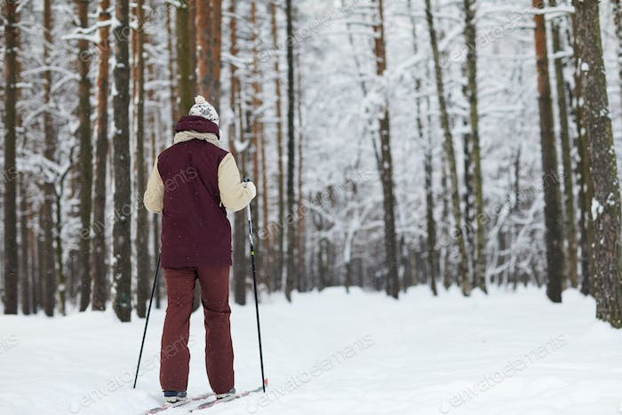 Man Skiing in Forest Back View