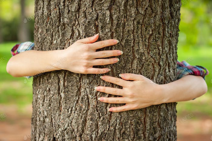 Loving the nature. Close-up of hands gesturing heart shape on the tree