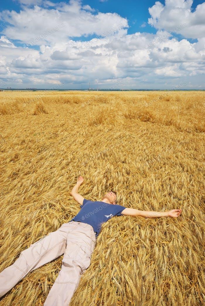 Mann liegt in gelber Weizenwiese.