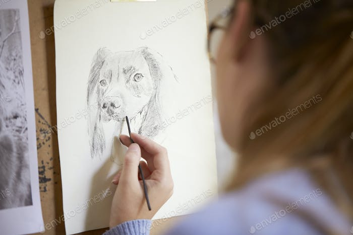 Close Up Of Female Teenage Artist Sitting At Easel Drawing Picture Of Dog In Charcoal