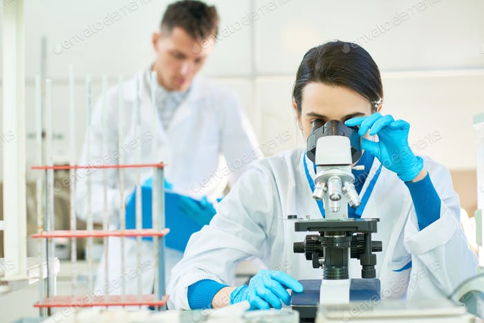 Working Process in Modern Laboratory