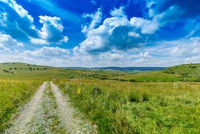 Field way on the green field