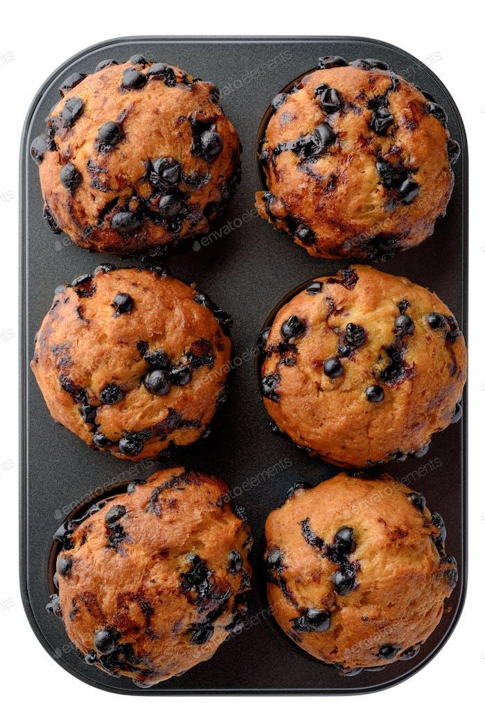 Black currant muffins