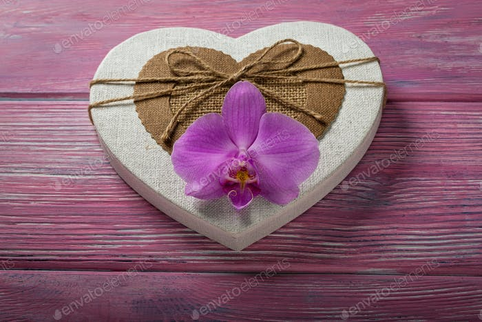 Gift box in the shape of a heart and Orchid