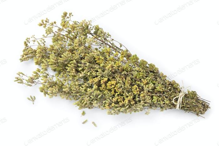 Bouquet of dried greek oregano