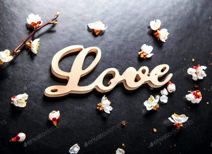 bloom on a black background and a wooden sign with the word love