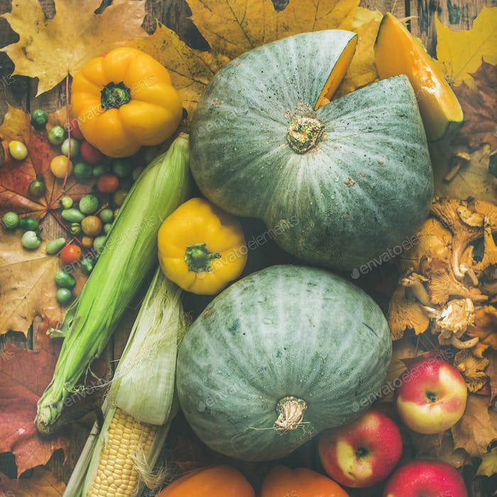 Fall vegetables assortment over wooden table background, square crop