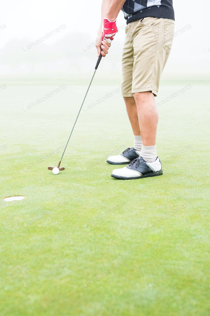 Golfer on the putting green at the hole at the golf course